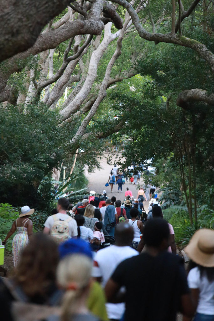 People walking to their cars after a Kirstenbosch concert